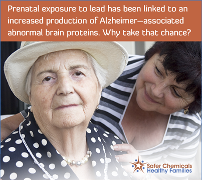 Prenatal Exposure to lead has been linked.png