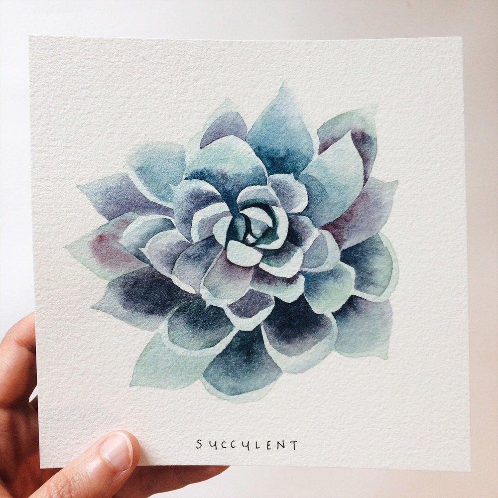 Day 085 Succulent 1.jpg
