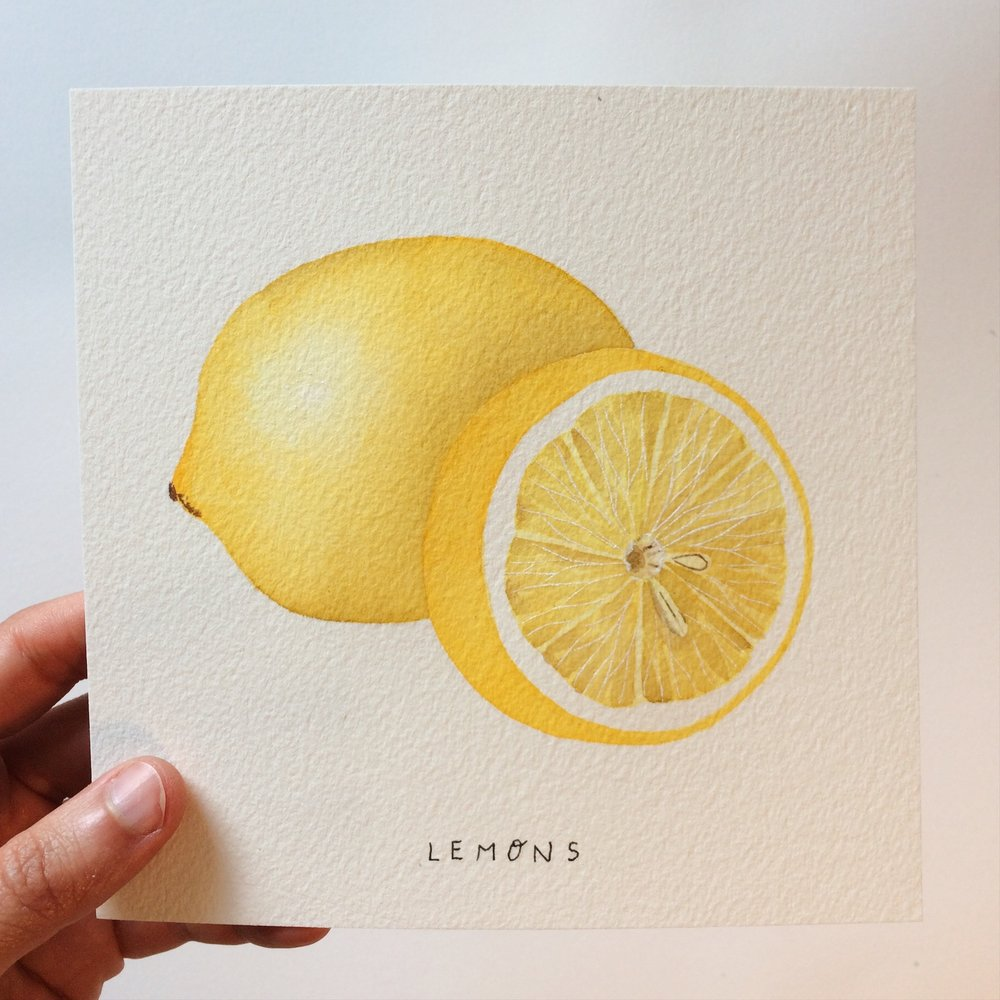 Day 053 Lemons 1.JPG