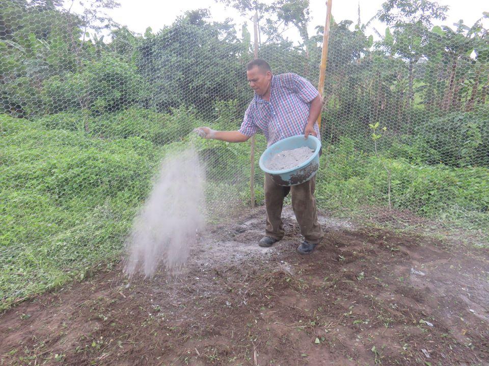 Preparing the soil.jpg