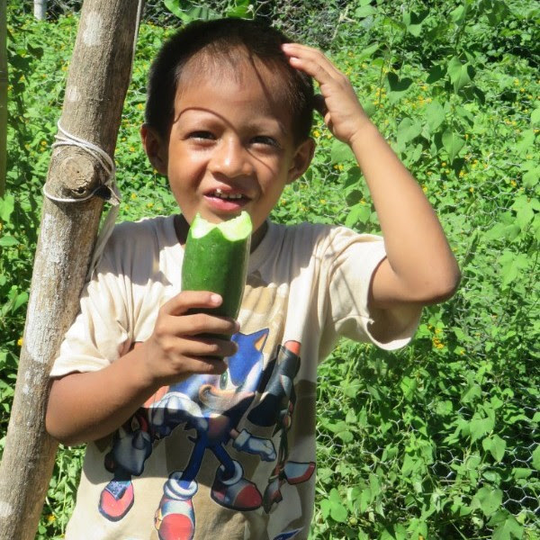 Young boy with cucumber.jpg