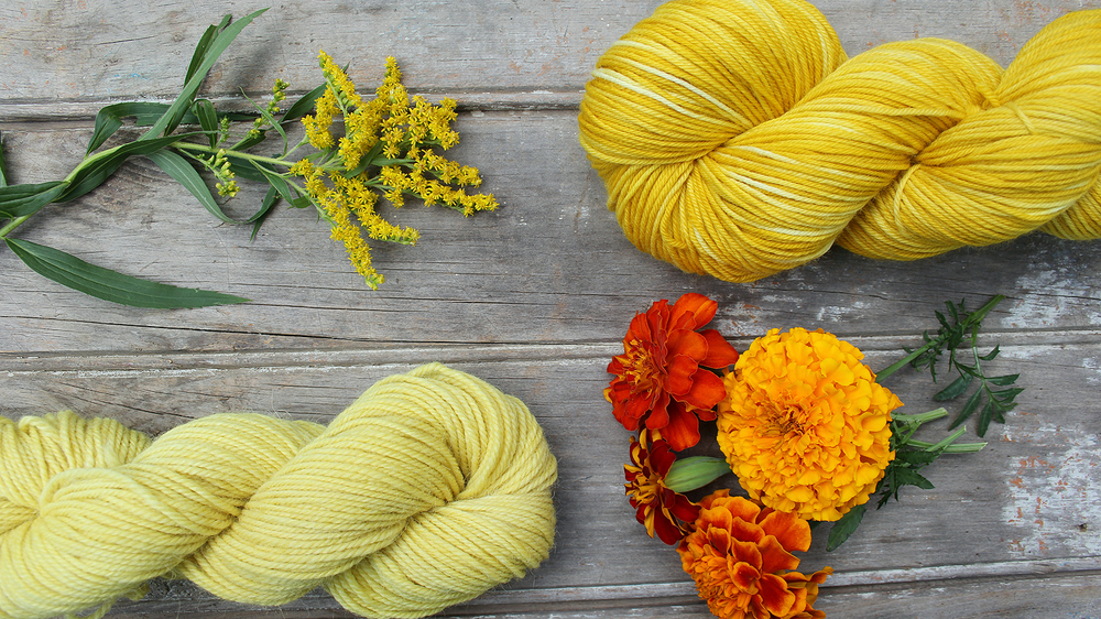 Liesl Made : Dyeing with Goldenrod and Marigolds