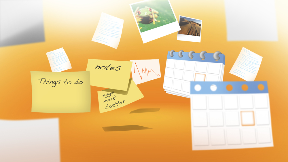 MSO2010_Boards_1_CV_v9.jpg