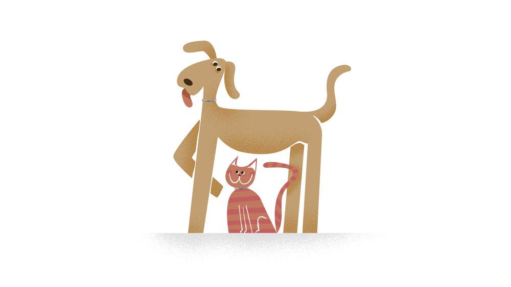 VIT-171009_SERESTO_Dog_Cat_Set_01.jpg