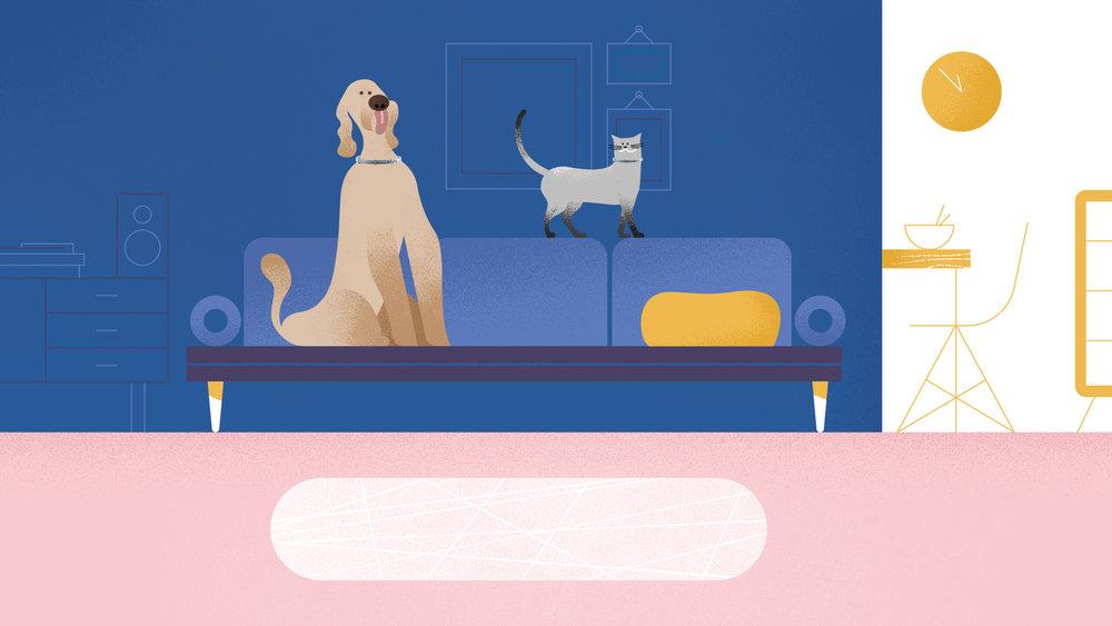 VIT-171009_SERESTO_LivingRoom_Dog_Cat.jpg