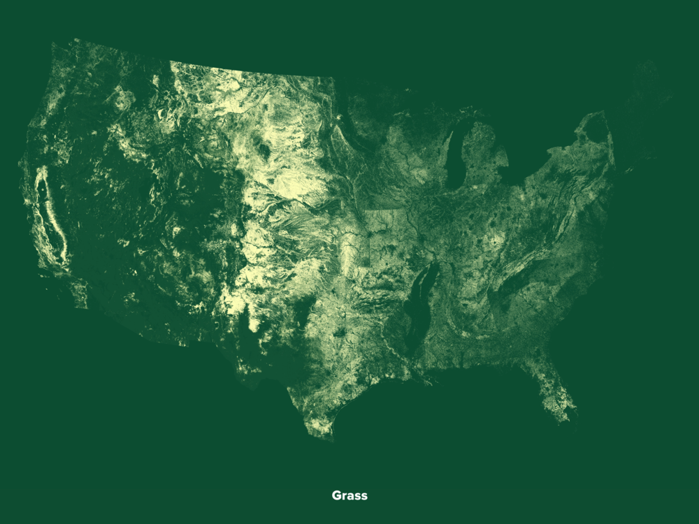 Grassland in America (2014 Data by USDA)