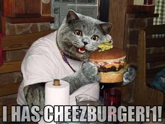 2007 04 Ihascheezburger1