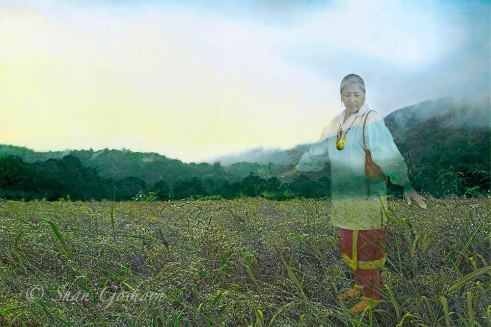 Kituwah Motherland
