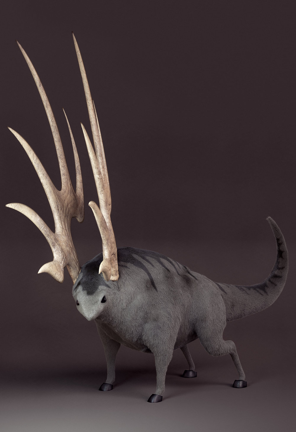 Antler_Shot_002_c_Final.jpg