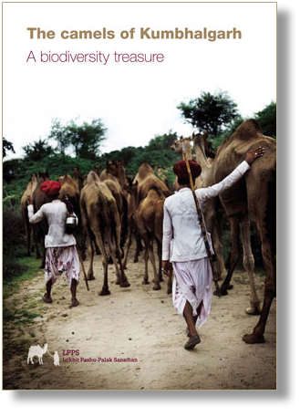 Find out more about India's camels and Rajasthan's native plants.