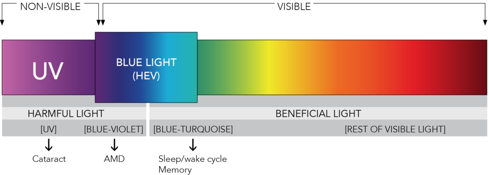 Wavelengths are measured in nanometers (nm).  1 nanometer equals 1 billionth of a meter.   AMD: age-related macular degeneration