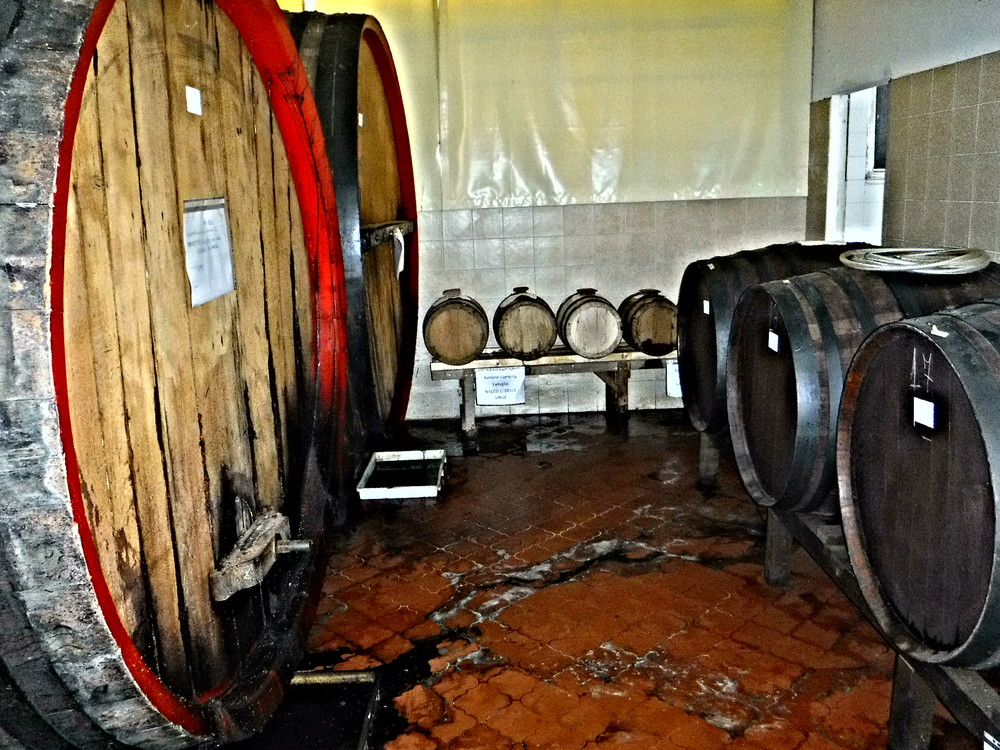 3. Aging barrels in the production facility.JPG