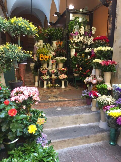 Bologna17.jpg.JPG