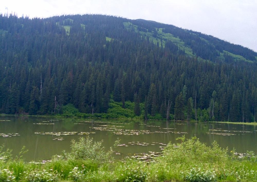 Kitimat-Stikine