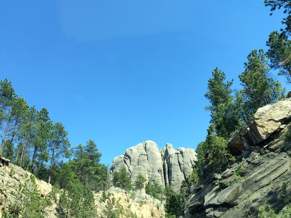 Mount Rushmore park