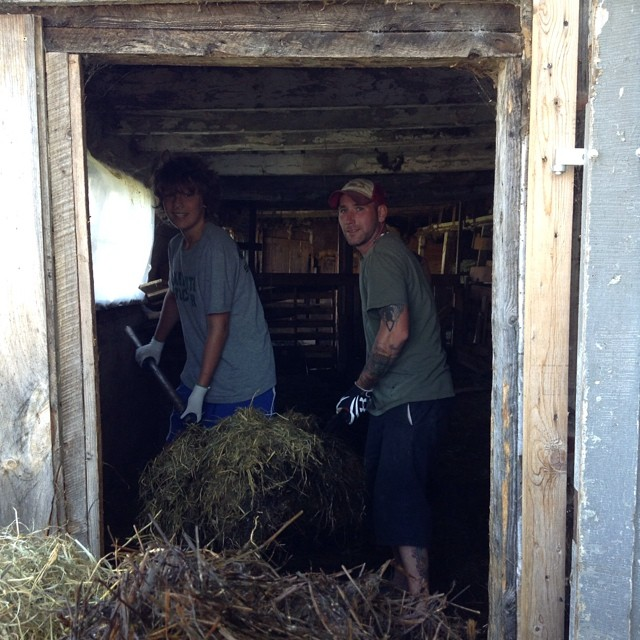 Jeb and Dave use teamwork to move a big chunk of used bedding from the kid pen. Our new WWOOFER Sam his helping out on this job too!