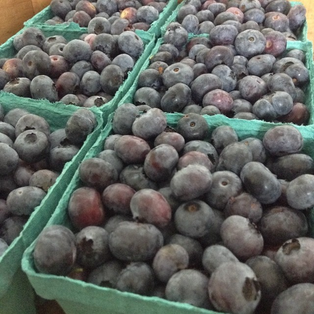 Blueberries are now available in the farm stand. PYO will start soon.