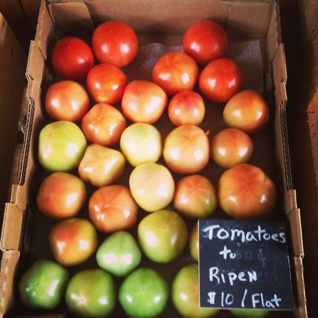 Tomatoes anyone? Bring home and Ripen this $10 flat of tomatoes in a paper bag. Stop by our fully stocked farm stand!