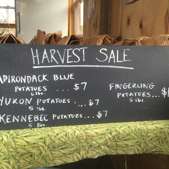 Come visit the farm stand! Harvest sale this weekend!