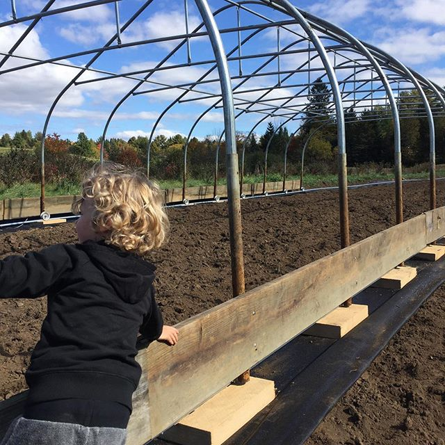 Thatcher giving us a hand moving the new rolling greenhouse. #moveablegreenhouse #meadowstonefarm #extendtheseason