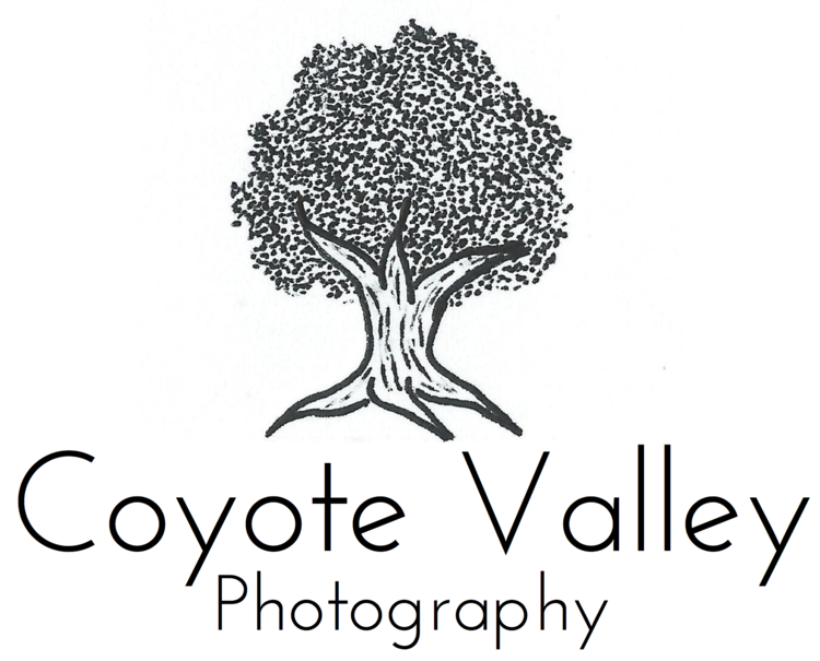 Coyote Valley Photography