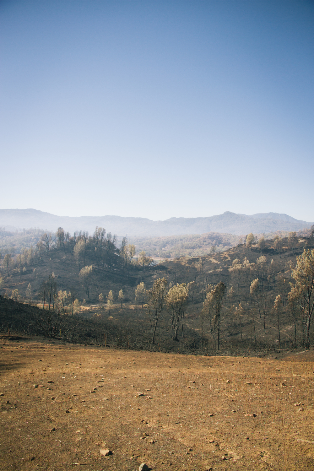 Valley Fire Aftermath: Black Hills between Middletown and Hidden Valley