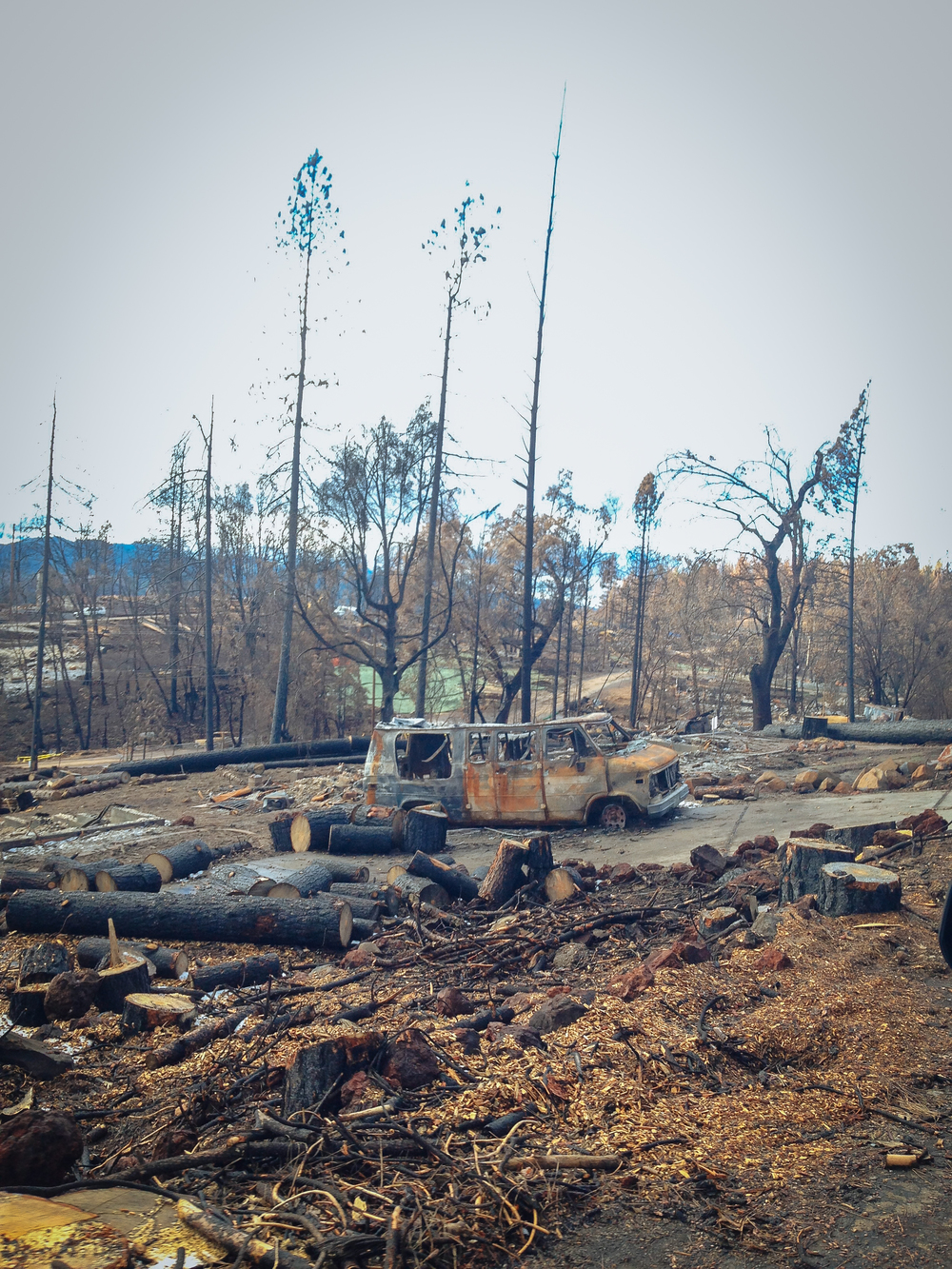 Destruction on Cobb Mountain from The Valley Fire - four months after the fire.