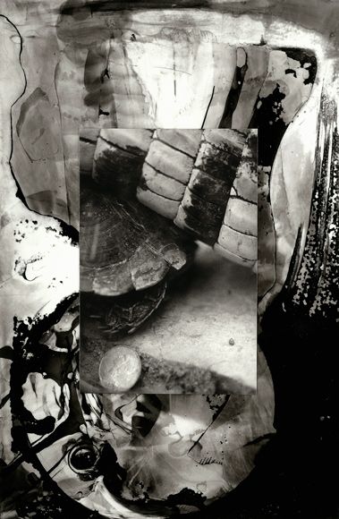 Worlds , 1994, ink and photograph on mylar, 10.5 x 7.75 inches, Private collection.