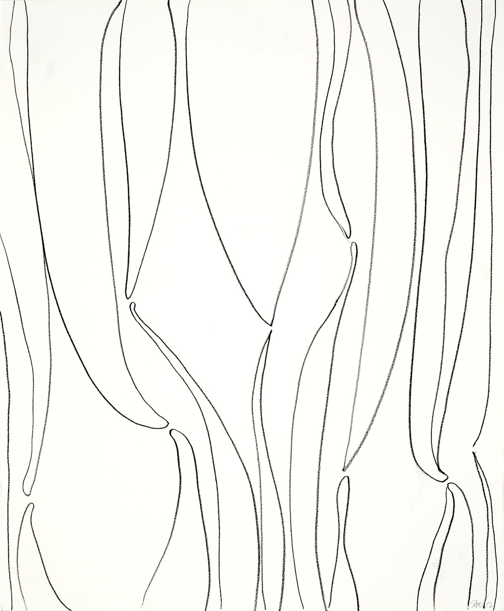 """Brian Wood <br> """"Meniscus"""" <br> Graphite on paper <br> 17 x 14 in."""