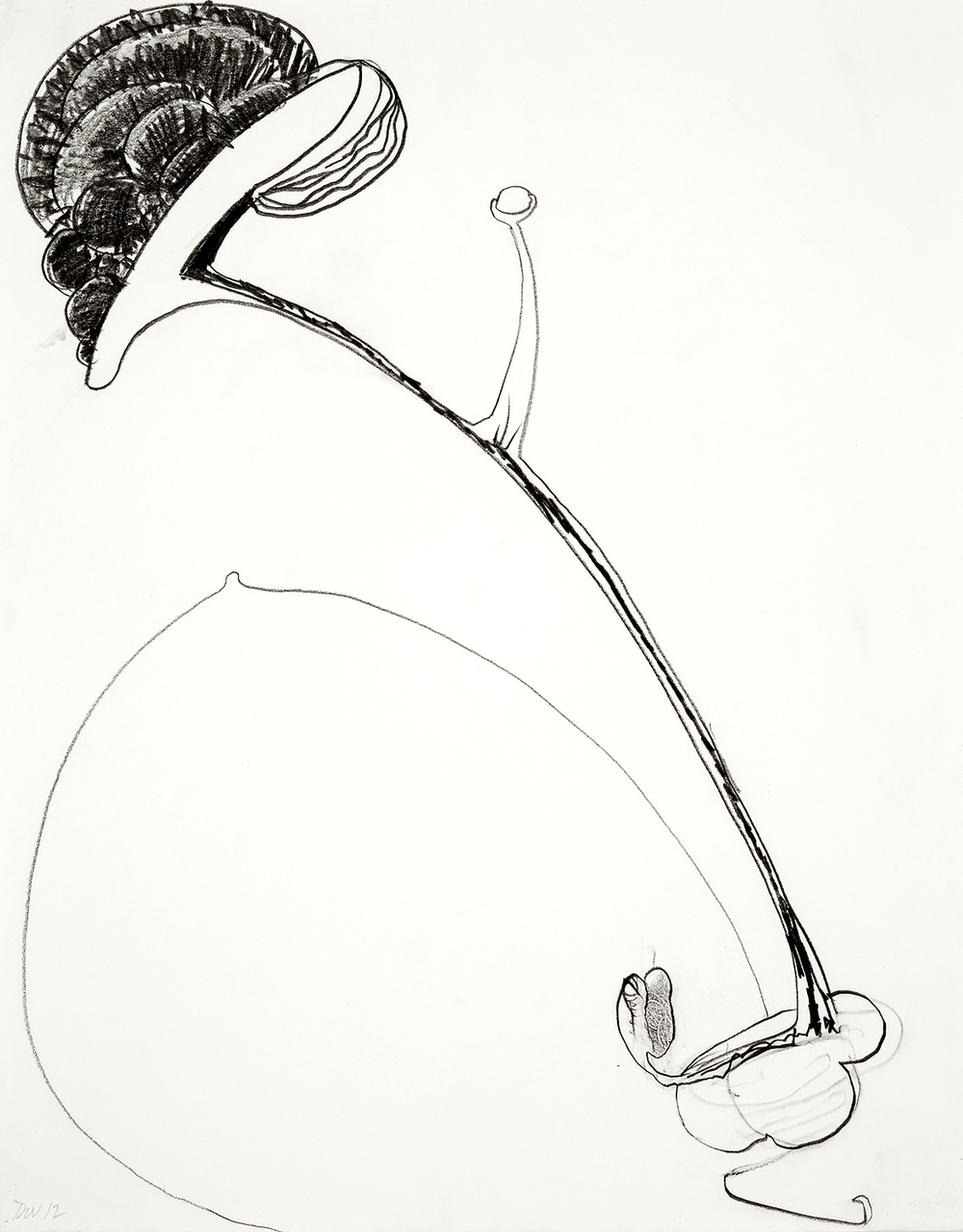 "Brian Wood <br> ""The Touch,"" 2012 <br> Graphite on paper <br> 14 x 11 in."