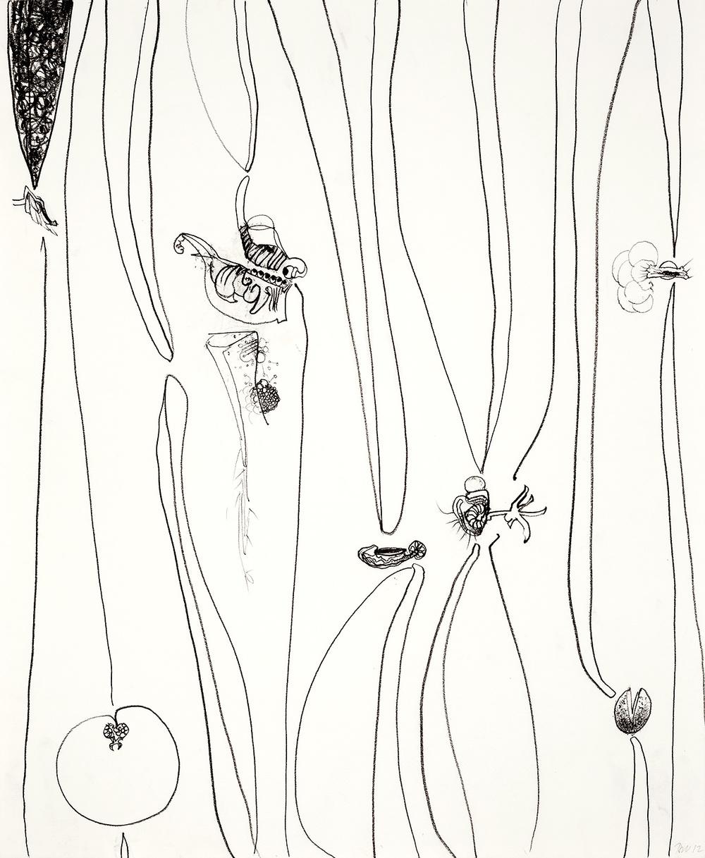 "Brian Wood <br> ""Lacuna""  <br> Graphite on paper  <br>  17 x 14 in."