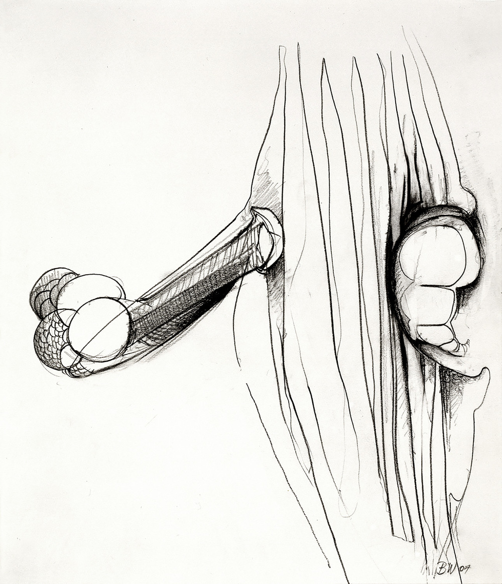 "Brian Wood <br> ""Object Relations,"" 2007 <br> Graphite on paper <br> 17 x 14 in."