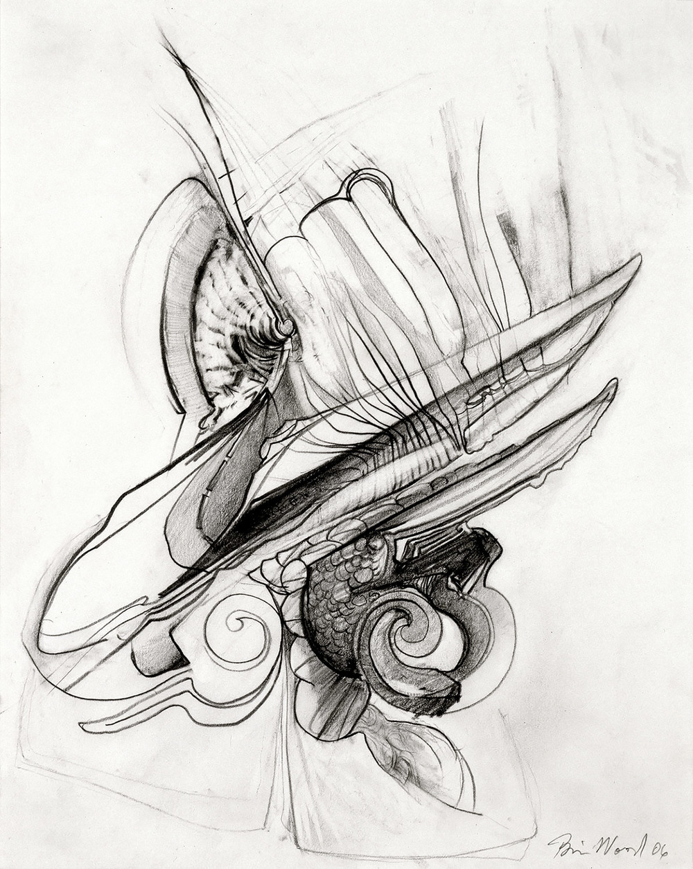 "Brian Wood <br> ""Spume,"" 2006 <br> Graphite on paper <br> 14 x 11 in."