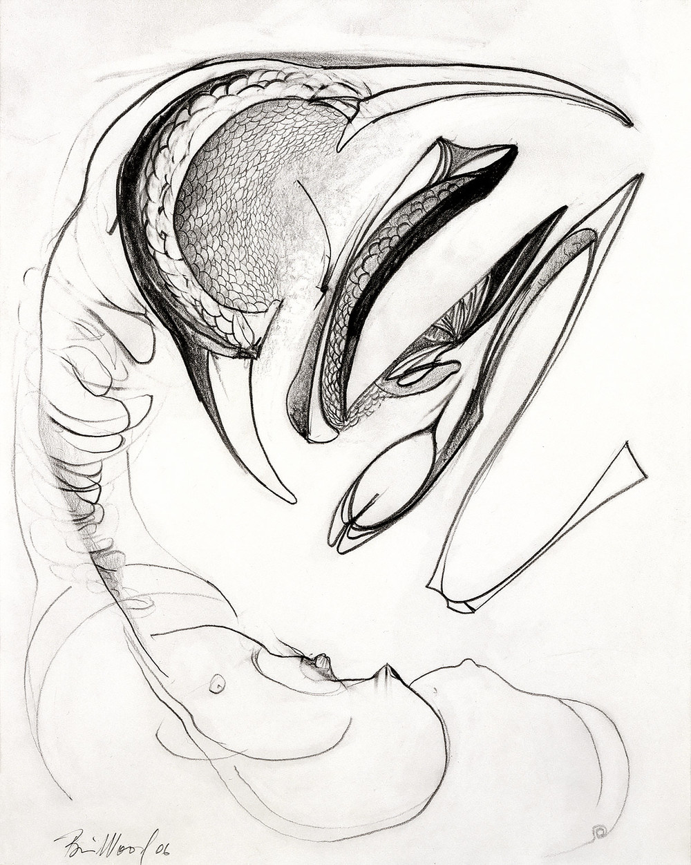"Brian Wood <br> ""Shrike,"" 2006 <br> Graphite on paper <br> 14 x 11 in."