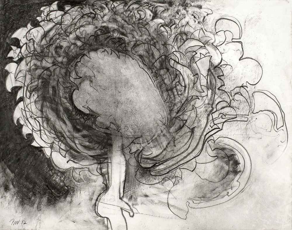 "Brian Wood <br> ""Incendere,"" 2012 <br> Graphite on paper <br> 11 x 14 in."