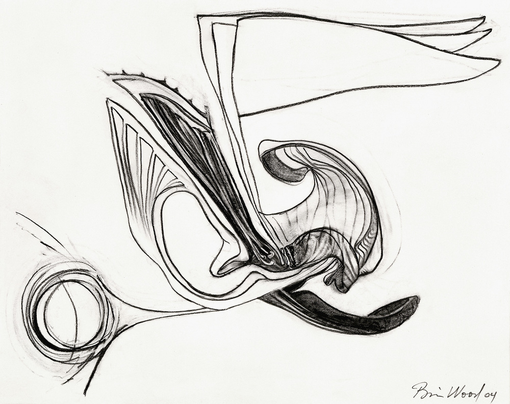 "Brian Wood <br> ""Blurt,"" 2004 <br> Graphite on paper <br> 11 x 14 in."