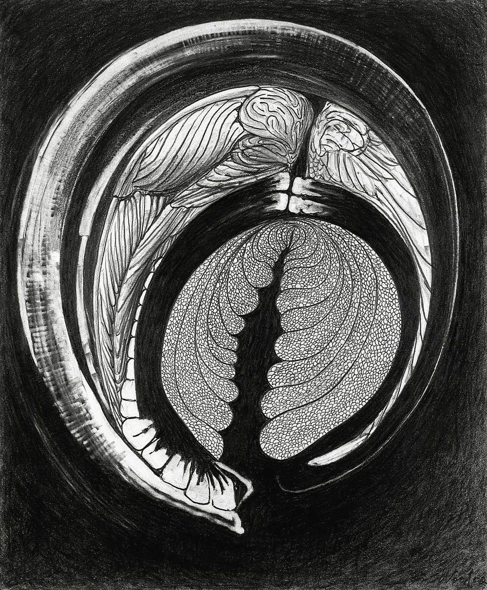 "Brian Wood <br> ""Skypiece,"" 2001 <br> Graphite on paper <br> 17 x 14 in."