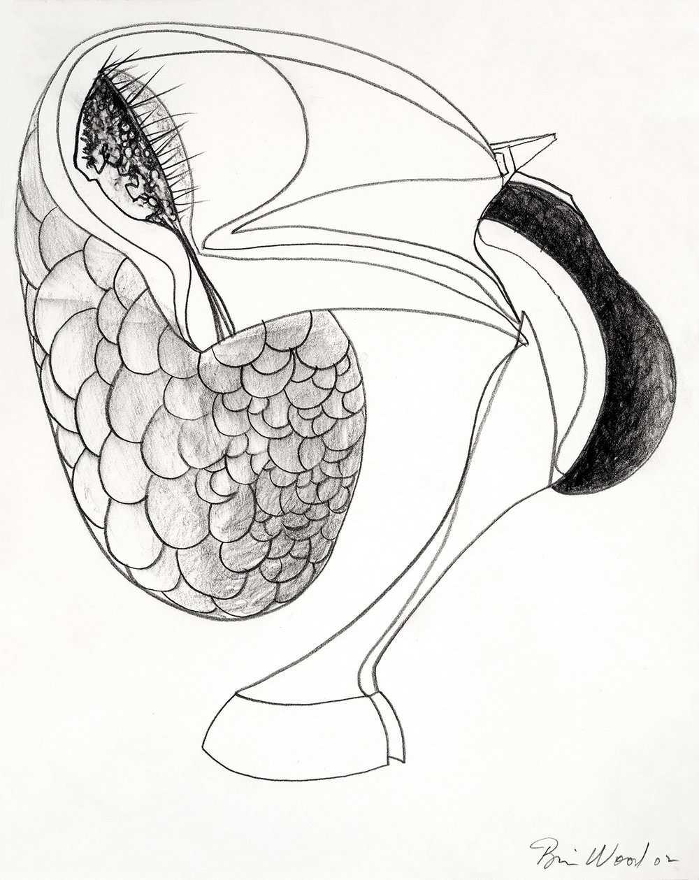 """Brian Wood  """"Untitled,"""" 2002  Graphite on paper  14 x 11 in."""