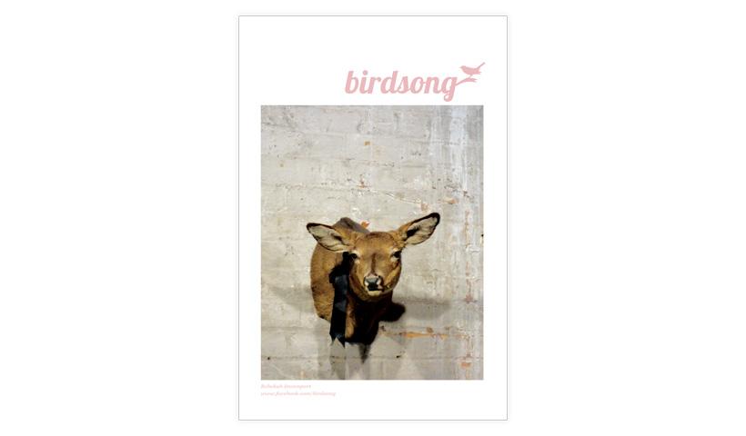 birdson.jpg