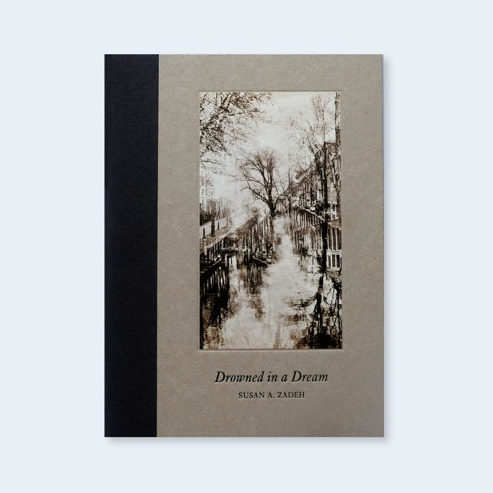 NEW!  Susan A. Zadeh  |   Drowned in a Dream  |  Order >