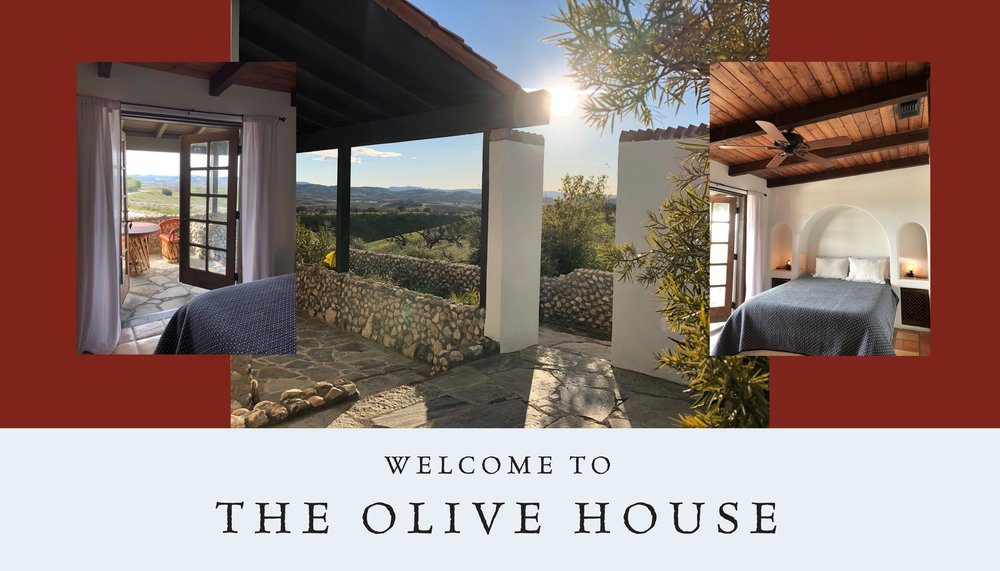 A vacation home overlooking the Nazraeli Cold Press Olive Farm in Paso Robles, California. Now available through   AirBnB  , or by   Contacting Us Directly
