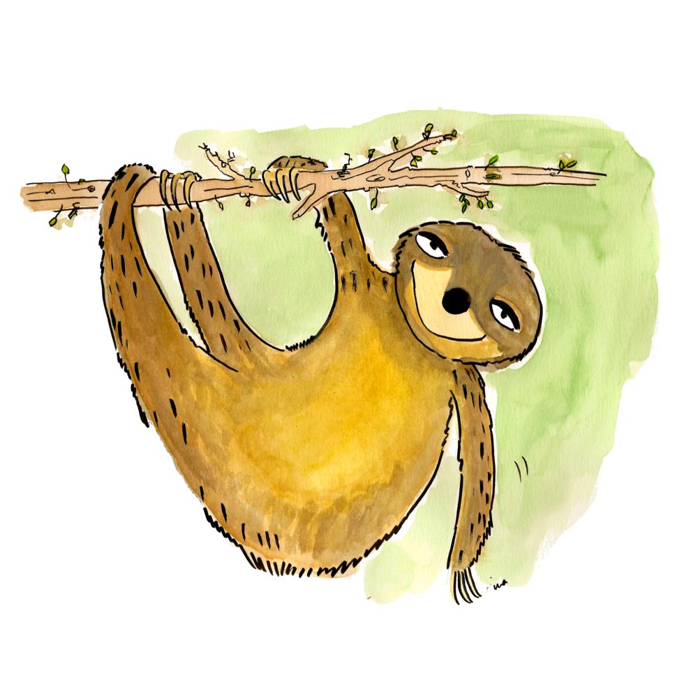 02. Sloth.png