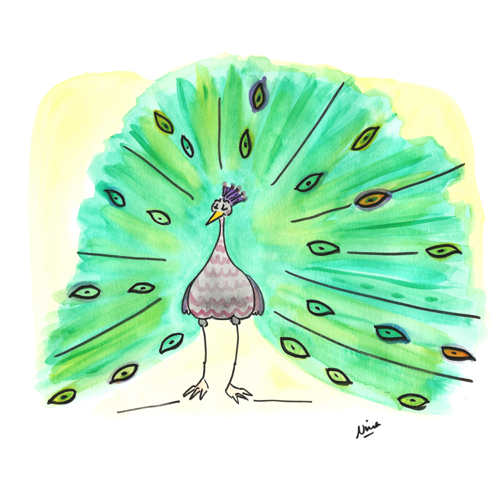 10. Peacock.png