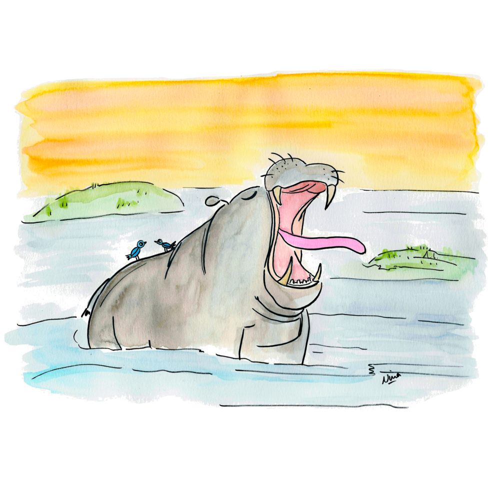 03. Hippo.png