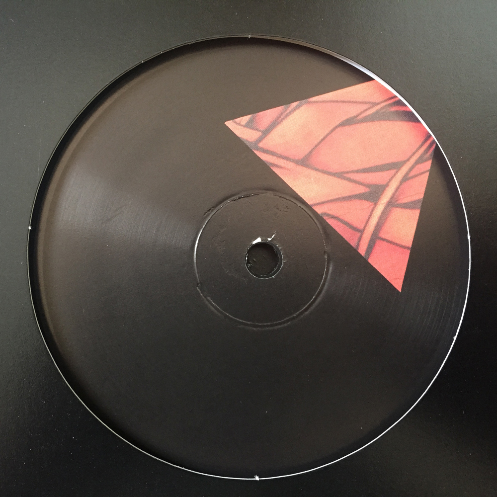 DAKINI9 - IRON JUNGLE EP (GV003)     A1 - Driftwould A2 - Howler B1 - Desolation B2 - Desolation (DJ Spider Remix)