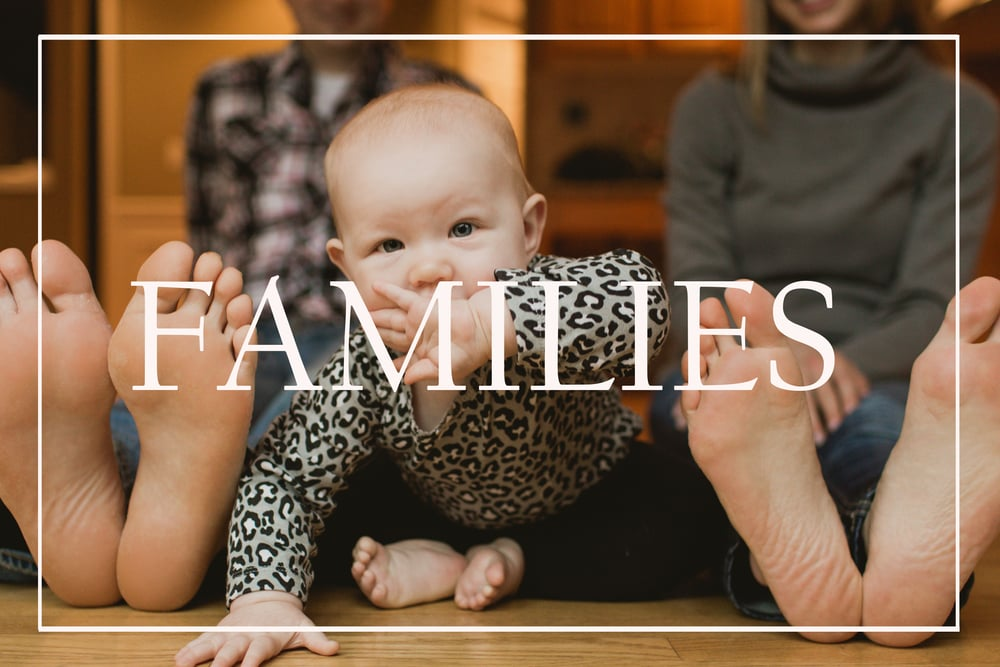 families click thru.jpg
