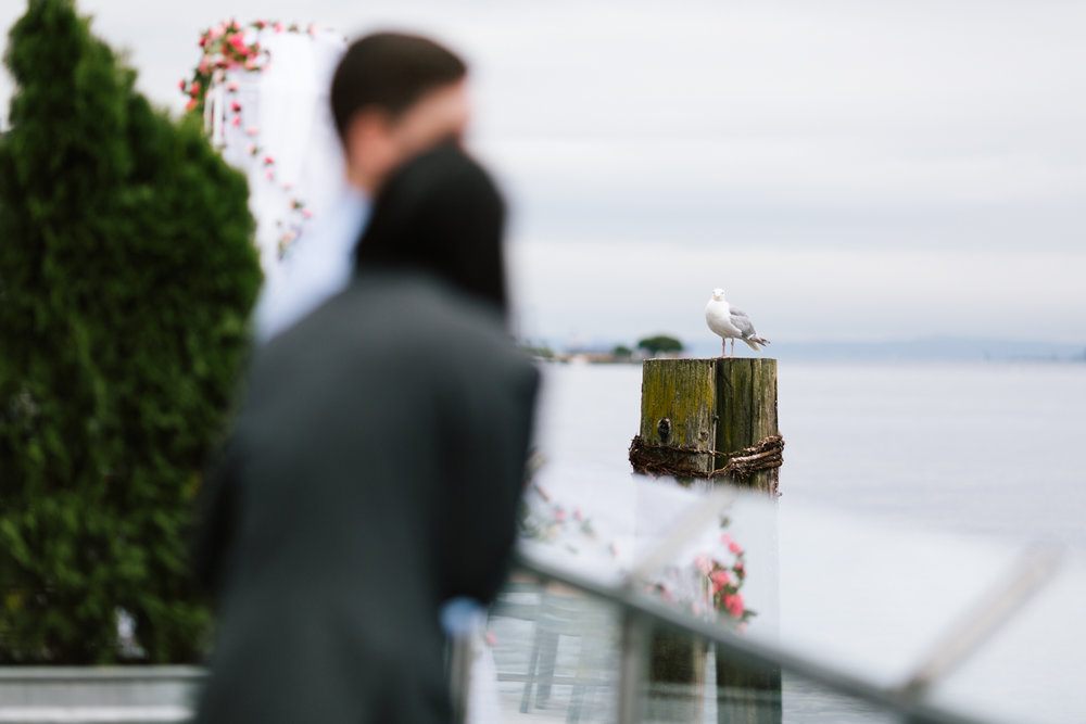 alki_seattle_waterfront_wedding-71.jpg