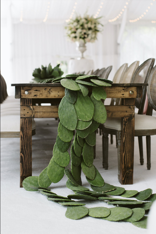 Black Tie Cacti Affair Photo 2.jpg