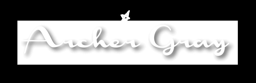 ARCHER_GRAY_FINAL_NP_DN_white-black.png