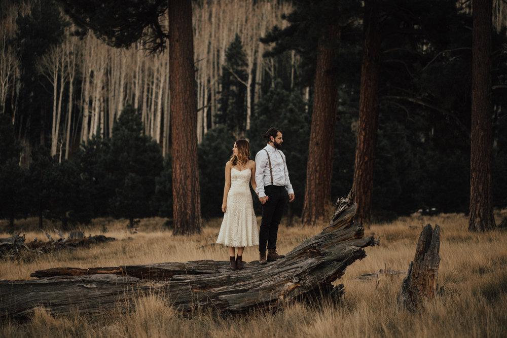 Katie_Jon_Forest_Engagement (38).jpg